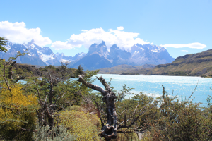 Our lunchtime view, Torres del Paine