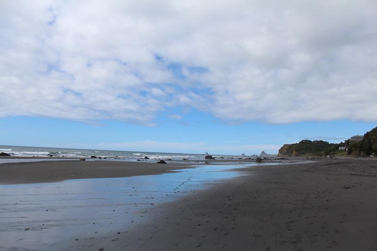 Oakura Beach